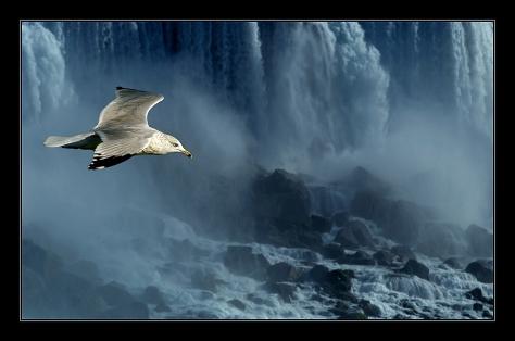 vivere-esistere-volo